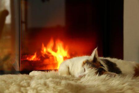 Estufas de pellets para calefacción de hogar